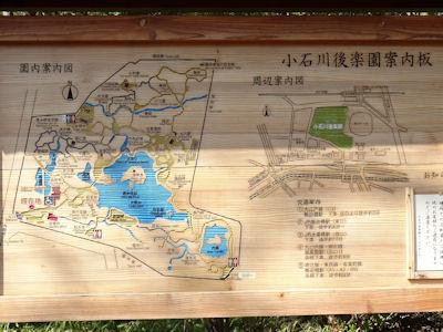小石川後楽園 桜 08