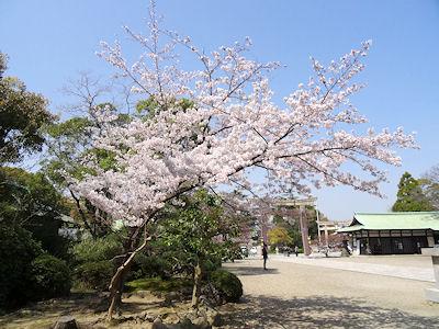 豊國神社 04