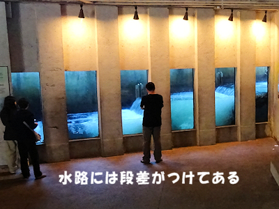 サーモンふ化場 03