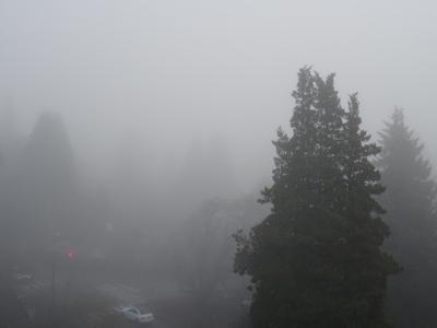 霧の朝 02