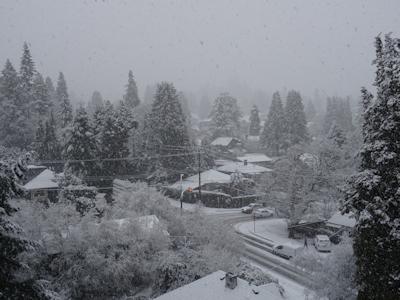 雪のバンクーバー 02