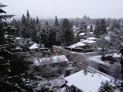 雪のバンクーバー 05