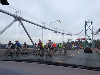 自転車がいっぱい レース