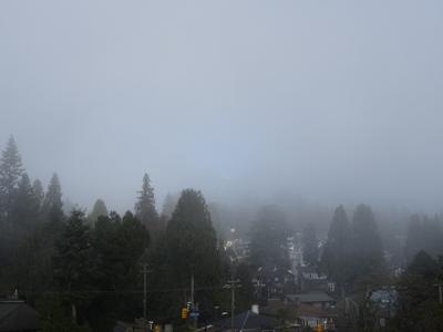 霧のバンクーバー 朝