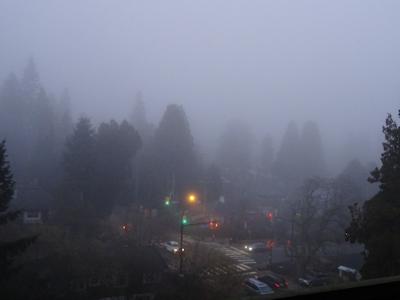霧のバンクーバー 夕方にはまた霧が。。。