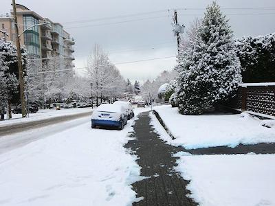 雪を取り除いてきれいになった歩道