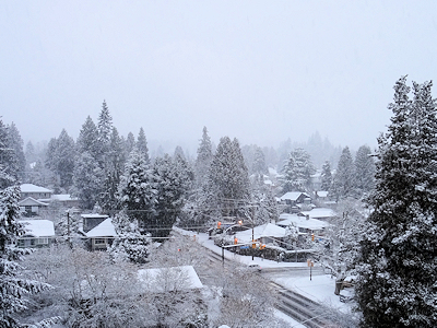 雪の日 2月12日