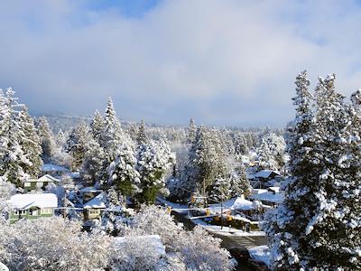 雪の日 2月13日