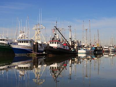 フィッシャーマンズ・ワーフ 漁船が並んでいる