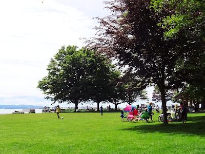 海辺の公園 John Lawson Park