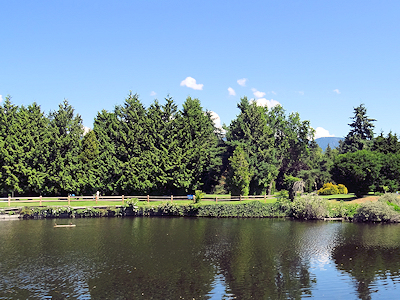 池の向こうにゴルフ場