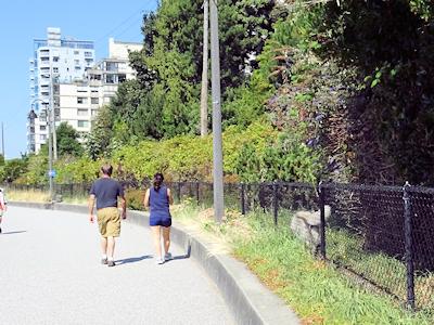 シーウォール 人と犬の散歩道