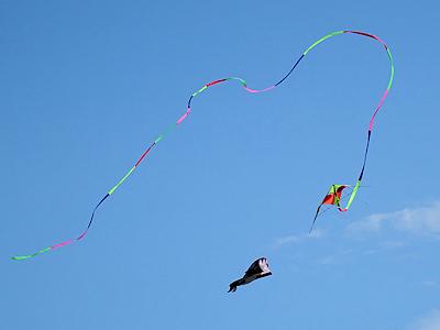 カナダの凧