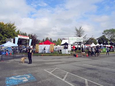 Coho Festival 入口