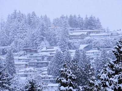 ウエストバンクーが雪で真白
