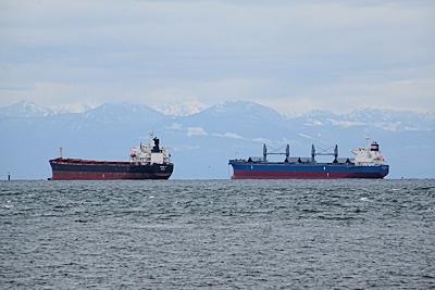 沖に停泊している貨物船