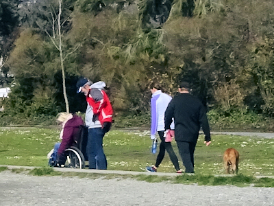 散歩する人たち
