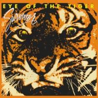 EyeOfTheTiger