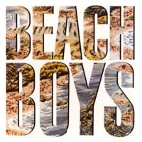 TheBeachBoys