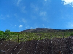 初富士登山2