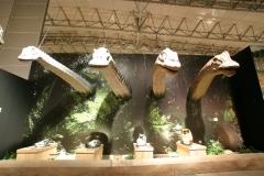 恐竜王国2012−1