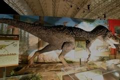 恐竜王国2012−2