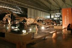 恐竜王国2012−3