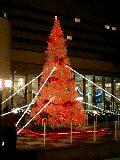 クリスマスイルミ2007サンルート.jpg