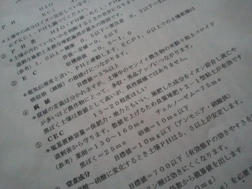 2011-02-13 11.23.44.jpg