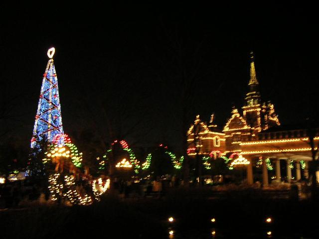 クリスマスツリー遠景