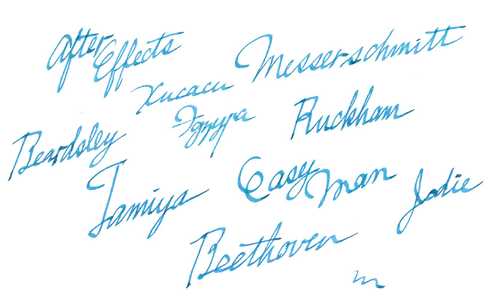 例えば、ラミーの「ジョイ」の表情は大好きで、いわゆる「筆記体っぽい」絵になります。