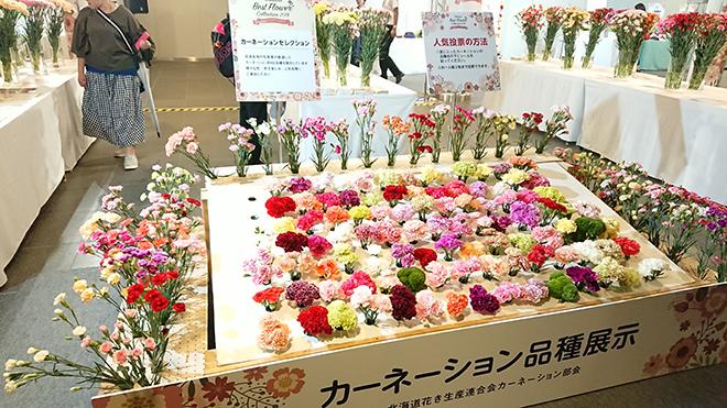 札幌チカホ「北海道ベストフラワーコレクション」