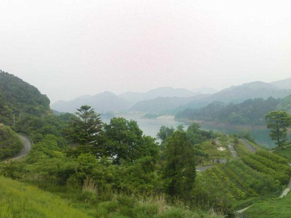 湖畔の景色 その1
