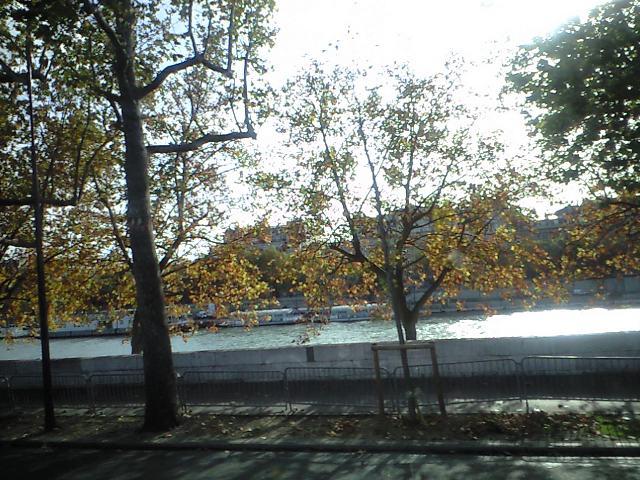 川を眺めたり