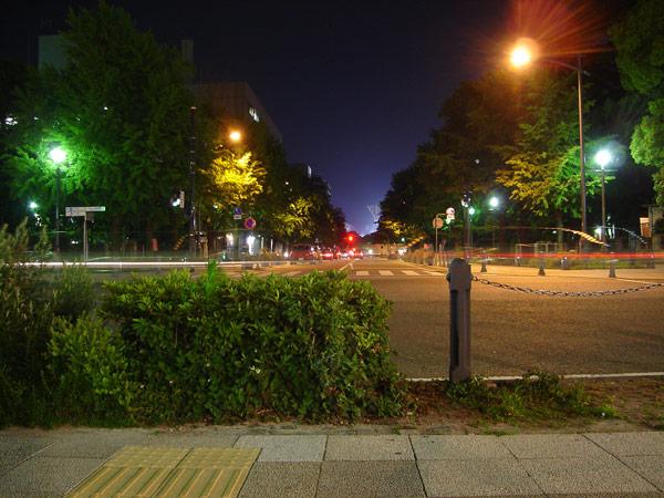 夜の横浜に寄ってみました