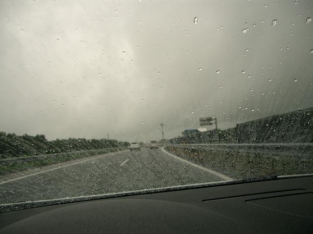 さっそく大雨・・・