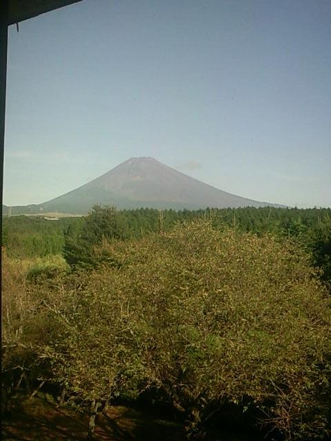 2日目の朝、宿泊施設からはこんなにキレイな富士山が