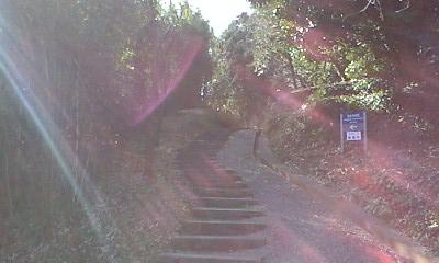 光の中の階段