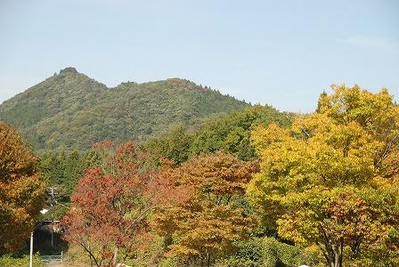 栃木県宇都宮ですから紅葉も!