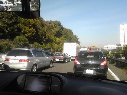 大渋滞なのね