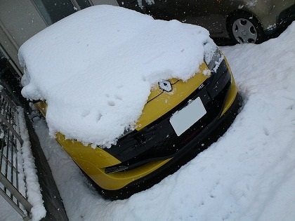 積雪してます・・・