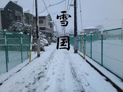完全に雪国