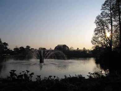 夕日に沈むキューガーデンの大温室