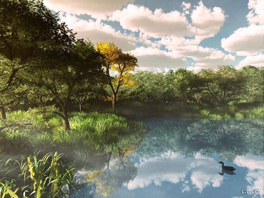 風景 森の池