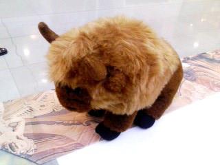 ズブロッカの牛