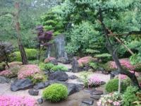 喜多院の庭