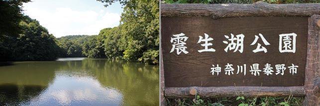 震生湖-1.jpg