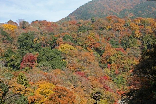 堂ヶ島渓谷-1.jpg