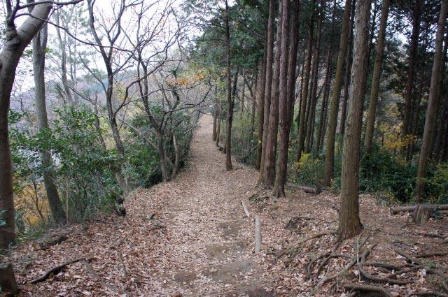 山道-1.jpg