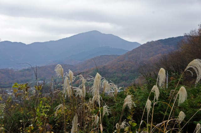大山-1.jpg